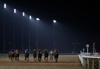 Alan Dudman's final bet of the week runs in Chelmsford's 19:00