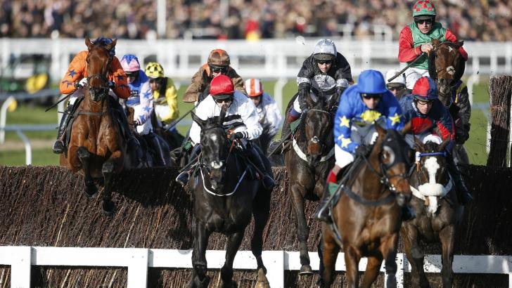 Cheltenham fence action