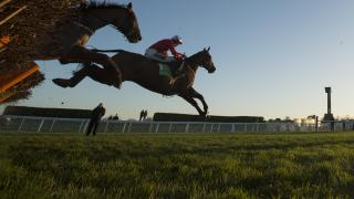 Horse racing action at Cheltenham