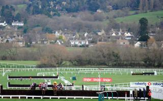 Establishing what it takes to win races at the Cheltenham Festival can lead to good value ante-post bets