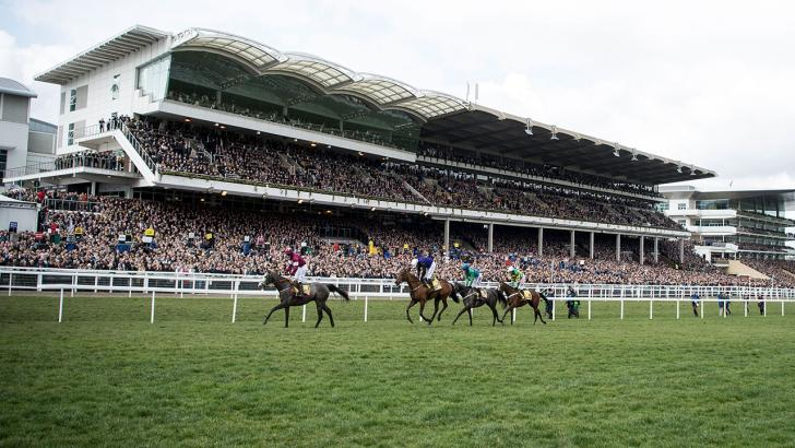 Cheltenham stand and runners