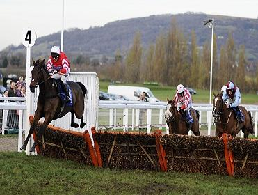 Today's 80/20 comes from Cheltenham