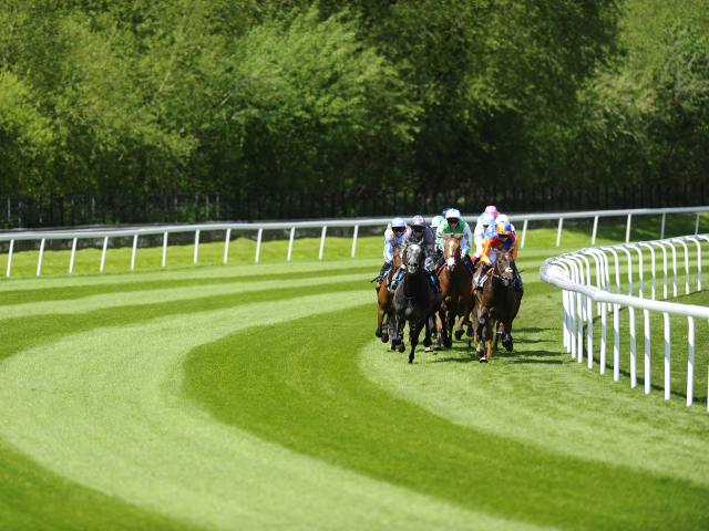 Tony Calvin has picked out three fancies from Thursday's racing at Chester