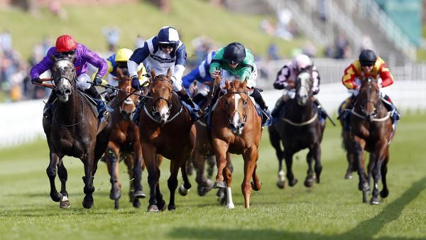 Chester-Races-Finish-1280.jpg