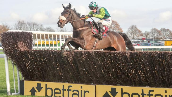 Clan Des Obeaux jumping Betfair fence