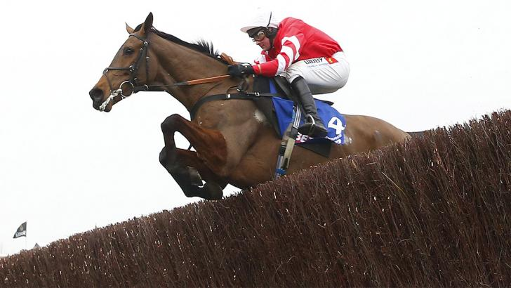 The novice who couldn't win the Gold Cup can now take the Charlie Hall