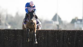 The Paul Nicholls-trained Cyrname