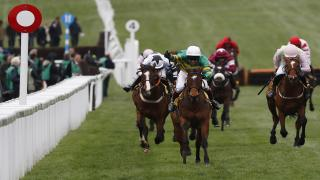 Defi Du Seuil runs this weekend at Cheltenham