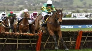 Tony Calvin is keen to oppose Finan's Oscar over fences at Cheltenham