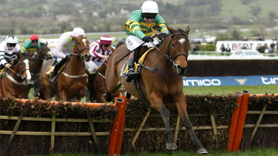 Cheltenham Hurdle action