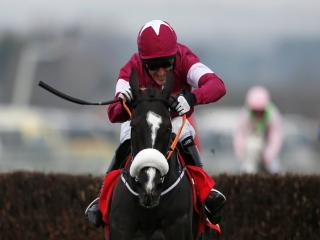 Don Cossack is the chosen mount of Bryan Cooper