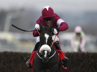 Don Cossack has been well-backed to win the Cheltenham Gold Cup today