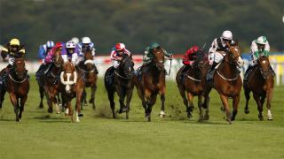 The Lincoln Handicap at Doncaster