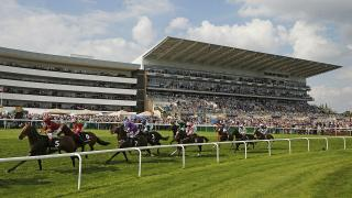 There is Flat racing at Doncaster on Friday