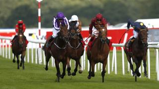 Aidan O'Brien could run Derby favourite Saxon Warrior at Doncaster