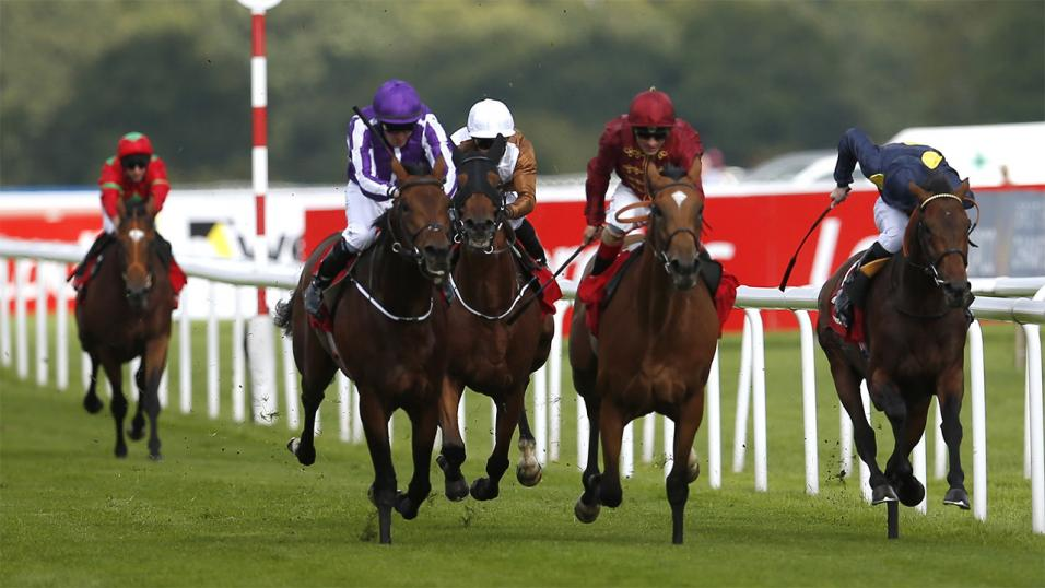 Racing Post Trophy 2017 Antepost Betting Tips