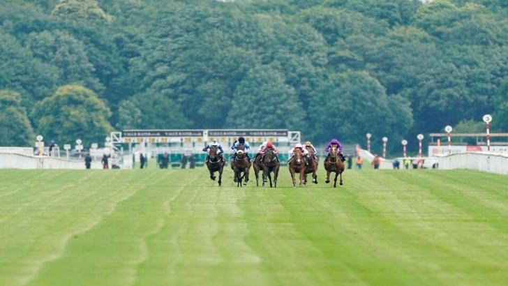 St leger festival 2021 betting trends my betting tips