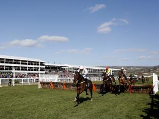 The Greatwood Hurdle is the feature race at Cheltenham on Sunday