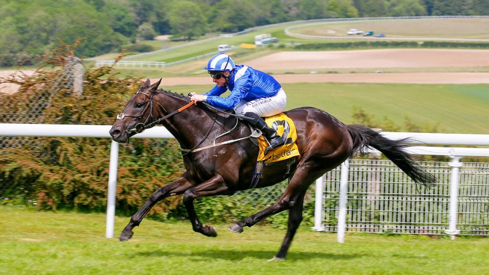 Racehorse Elarqam in action