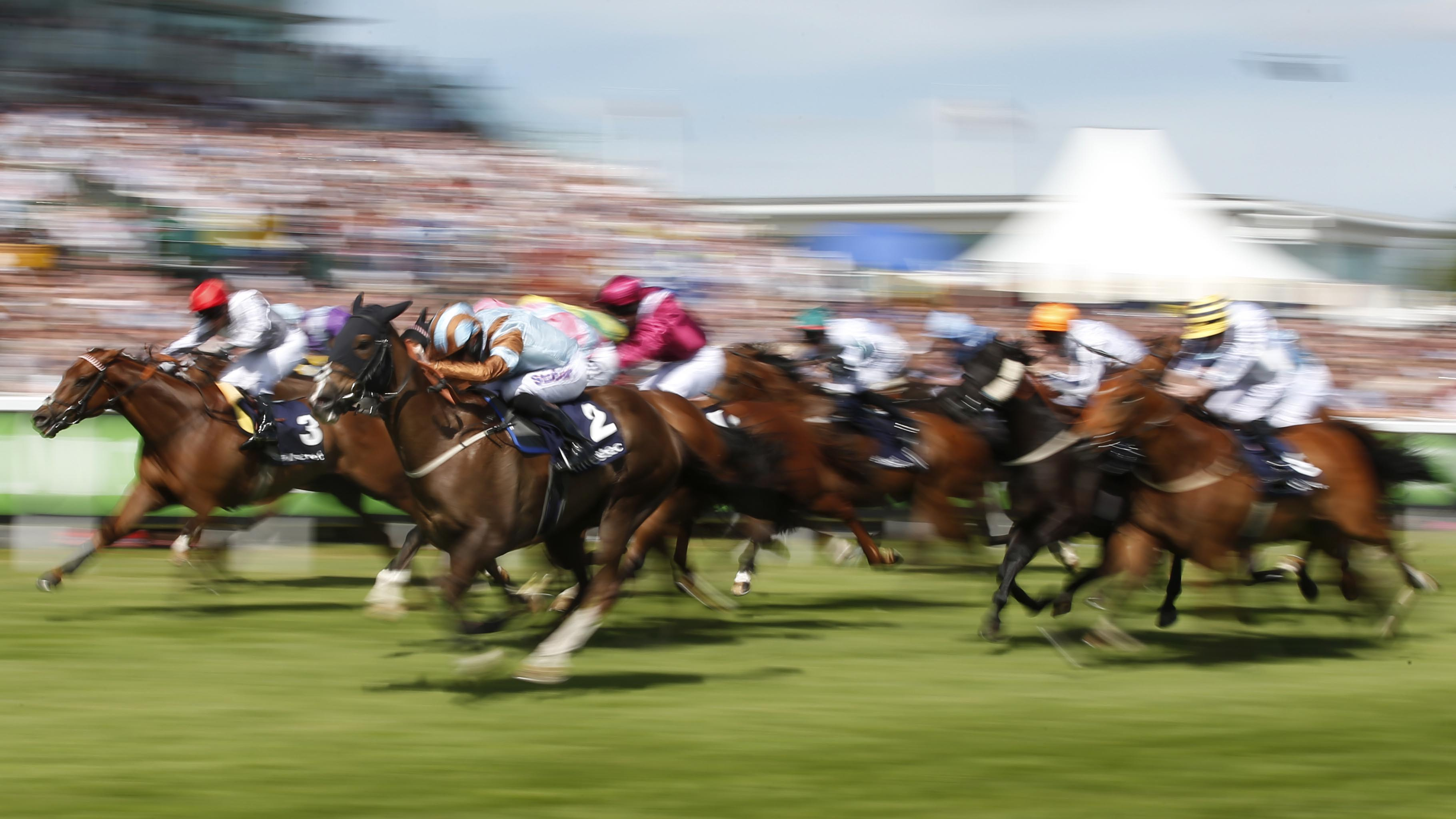 Coronation cup betting odds gnoming bookmakers betting