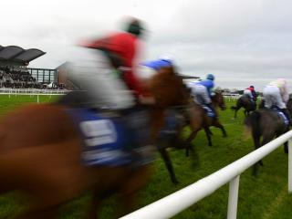 There's racing at Fairyhouse on Saturday