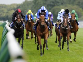 Flat racing comes from Naas on Wednesday