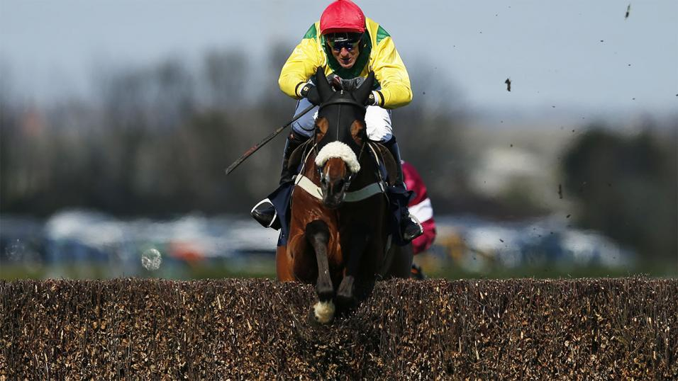 Fox Norton is the red-hot favourite for Saturday's Betfair Tingle Creek