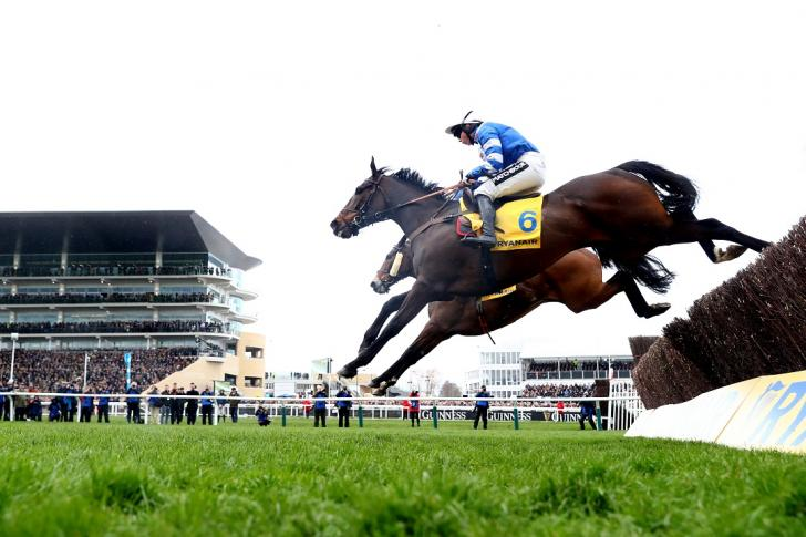 Frodon at Cheltenham