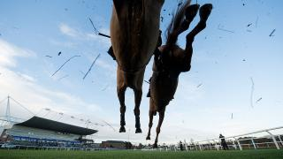 horse racing jumps