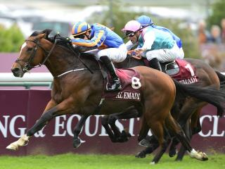 Ben thinks Territories can reverse French form with Guineas favourite Gleneagles