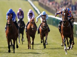 Gleneagles and Solow are set to clash in the Sussex Stakes