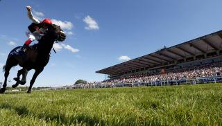 Can the Golden Horn silks be carried to success at Salisbury on Sunday?