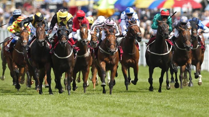 Goodwood sussex stakes betting advice how many people will bet on the super bowl 2019