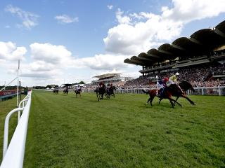 There is Flat racing from Goodwood on Sunday