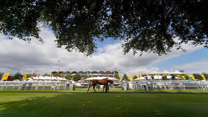 Goodwood Races in Sussex