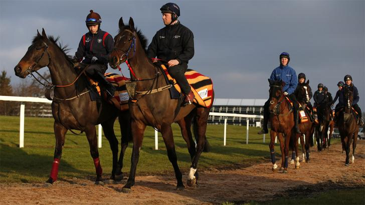 Gordon Elliott horses