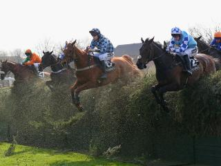 It's Grand National day on Saturday