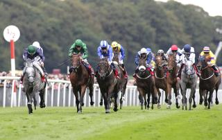 The ground at Haydock could go against the market leaders