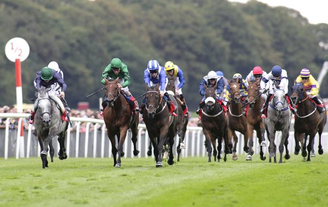 There is Flat racing from Haydock on Friday evening