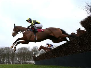 Life Less Ordinary and Rocket Punch both race at Haydock this afternoon
