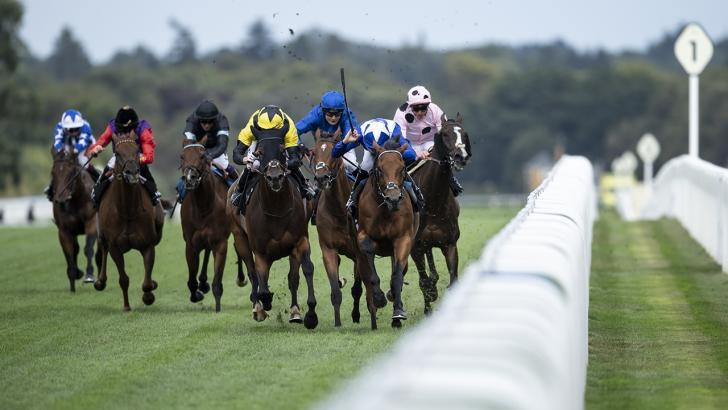 Flat racing action at Ascot
