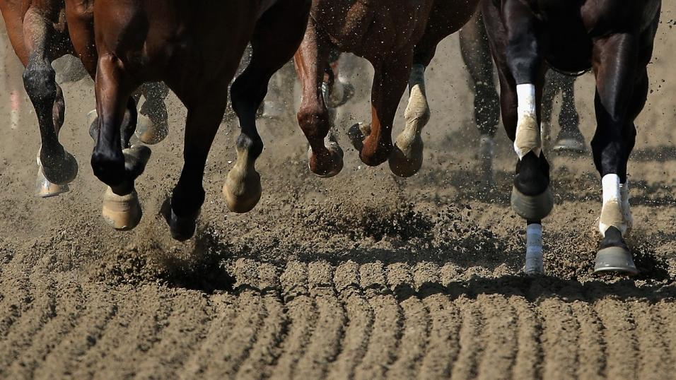 Horses running on dirt