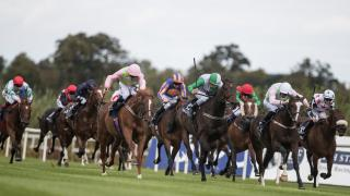 Irish Flat racing