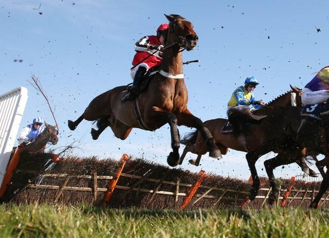 Jumping National Hunt