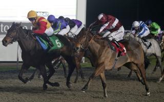 Alan is hoping Tashaaboh can get his head in front at Kempton on Tuesday