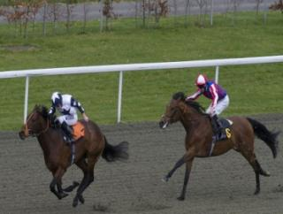 Our final bet on Wednesday runs at Kempton