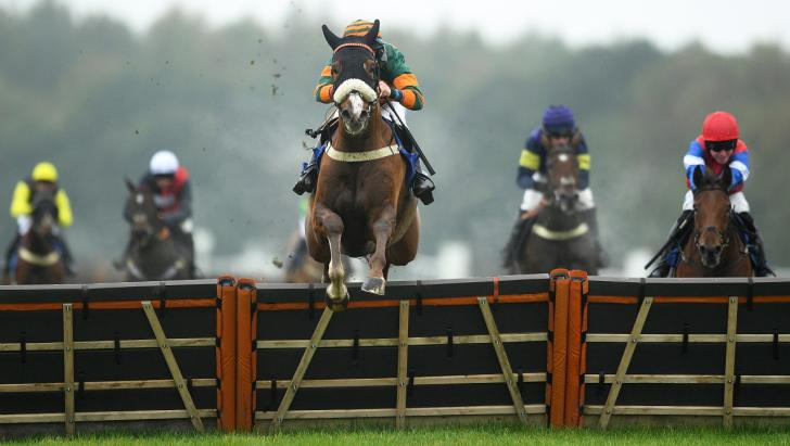 Horses over a hurdle