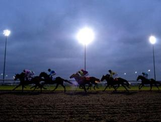 They race under the floodlights at Kempton on Wednesday