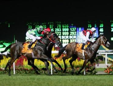Gary's recommends a bet at Kranji