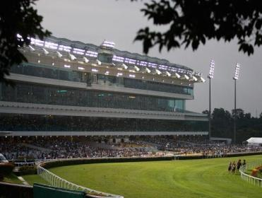 Racing comes from Kranji on Sunday